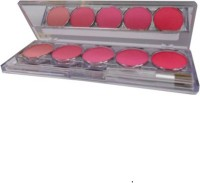 CHABARWAL 5 Color Long Lasting Blusher Palette(multicolour)