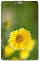 SmartNxt CCPD-16GB-0244 16 GB Pen Drive(Yellow)