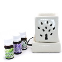 Lyallpur Stores Ceramic Aroma Electric Diffuser /Aroma Oil Lamp/Ceramic Burner Mini Square Shape ( WHITE) for Home | Office | Gym | Spa. With (30 ML) Fragrance Oil (10 ml Each) Diffuser Set(4 x 2.5 ml)