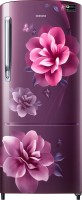 Samsung 192 L Direct Cool Single Door 3 Star Refrigerator(Camellia Purple, RR20R172ZCR/HL) (Samsung)  Buy Online