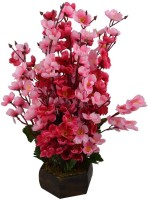 KOONIV Artificial Flower Pot For Home Decor - 16 inch Multicolor Orchids Artificial Flower  with Pot(16 inch, Pack of 1)