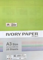 PREMIUM QUALITY IVORY PAPER UNRULED A3 SIZE 210 gsm Drawing Paper(Set of 1, White)
