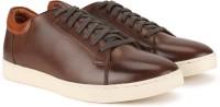 Bata Sneakers For Men(Brown)