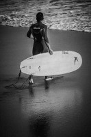 Surfing(English, Paperback, Wild Pages Press Journals, Notebooks)