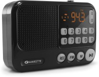 Amkette Pocket FM Portable Multimedia Bluetooth Speaker with Voice Recorder, USB, SD Card and Clock FM Radio(Black)