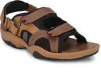 Black Cooper Men Brown Sandals