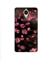 Casotec Pink Flowers Design Printed Silicon Soft TPU Back Case Cover for Panasonic Eluga Ray Max
