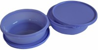Tupperware 551  - 1000 ml Polypropylene Grocery Container(Pack of 2, Grey)