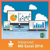 MANIPAL Advanced MS Excel 2016 Vocational & Personal Development(Voucher)