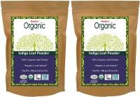 Radico 100% Organic Indigo Leaf Powder(2 In 1) , Natural Hair Color
