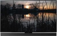 Panasonic 164cm (65 inch) Ultra HD (4K) OLED Smart TV(TH-65FZ1000D)