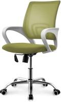 Vilkhu Pearlgreen-vk-79 Chair(Pearl Green)