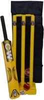 CW Junior Plastic Set Cricket Kit