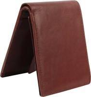 Tree Wood Men Trendy, Formal, Casual Brown Genuine Leather Wallet(10 Card Slots)