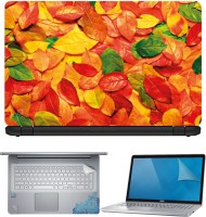 FineArts Color Leaves 4 in 1 Laptop Skin Pack with Screen Guard, Key Protector and Palmrest Skin Combo Set(Multicolor)