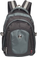 Cosmus 17 inch Laptop Backpack(Black, Blue)