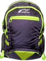 Donex 15 inch Laptop Backpack(Purple)