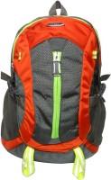 Donex 15 inch Laptop Backpack(Multicolor)