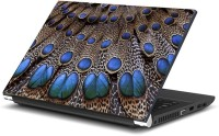 View Dadlace Peacock wings Vinyl Laptop Decal 14.1 Laptop Accessories Price Online(Dadlace)