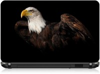View Ng Stunners Eagle662 Vinyl Laptop Decal 15.6 Laptop Accessories Price Online(Ng Stunners)