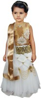 Angel Wears Girls Lehenga Choli Ethnic Wear Self Design Lehenga, Choli and Dupatta Set(Multicolor, Pack of 1)