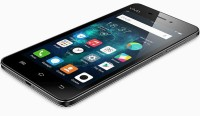 VIVO Y31L (Black 16 GB)(1 GB RAM)