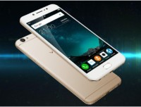 Vivo V5 (Crown gold, 32 GB)
