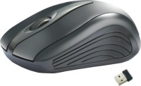 Amkette Ergo FMS271P Wireless Optical Mouse(USB, Black)