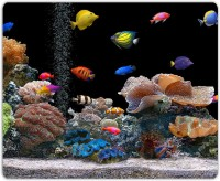 View Lovely Collection Fishes Under Sea Mousepad(Multicolor) Laptop Accessories Price Online(Lovely Collection)