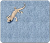 View Allthingscustomized Lizard Mousepad(Multicolor) Laptop Accessories Price Online(Allthingscustomized)
