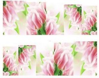 Azzuro Manicure Water Decal Sticker(Baby Pink Floral) - Price 99 50 % Off