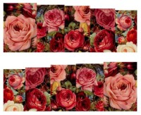 SENECIO� Multicolor Rose Bunch Floral Full Wraps Nail Art Manicure Decals Water Transfer Stickers 1 Sheet(Multicolor)