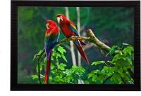 eCraftIndia Parrots Pair Satin Matt Textured UV Art Canvas 11 inch x 14 inch Painting