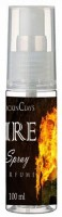 Rockinclay Fire Eau de Parfum  -  100 ml(For Boys)