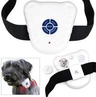 Futaba Embellished Dog Collar Charm(White, Other)