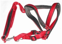 Smarty Pet Control Collar Dog Standard Harness(Small, Red)
