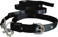 Paw Zone Dog Collar & Leash(Extra Large, Black)