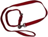 Smarty Pet Control Collar Dog Everyday Collar(Medium, Red)