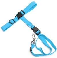 Futaba Dog Collar & Chain(Large, Blue)