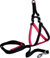 Paw Zone Dog Harness & Leash(Medium, Pink)