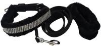 Pets Planet Dog Collar & Leash(Medium, Black)