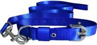 Paw Zone Dog Collar & Leash(Small, Blue)