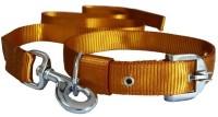 Pethub Dog Collar & Leash(Large, Brown)