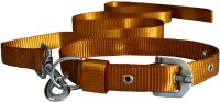 Paw Zone Dog Collar & Leash(Large, Gold)