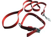 Suraj Chains Dog Collar & Leash(Small, Red)