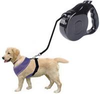 Futaba Dog Collar & Chain(Large, Black)