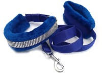Pets Planet Dog Collar & Leash(Extra Large, Blue)