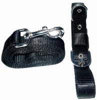 Pets Planet Dog Collar & Leash(Extra Large, Black)