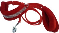 Pets Planet Dog Collar & Leash(Extra Large, Red)