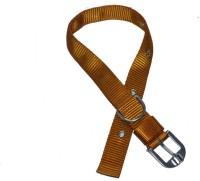 Bow! Wow !! Dog Everyday Collar(Medium, Golden Brown)